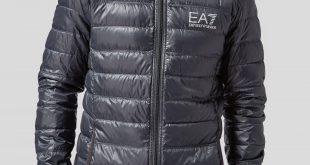 bubble coats emporio armani ea7 bubble hooded jacket | scotts menswear KCKBGVT