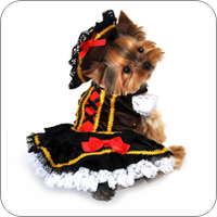 dog clothes dog sports apparel · costumes XRZBSDL