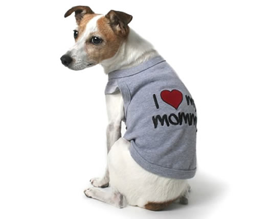 dog clothes fun dog t-shirts shop now LKFDHYE