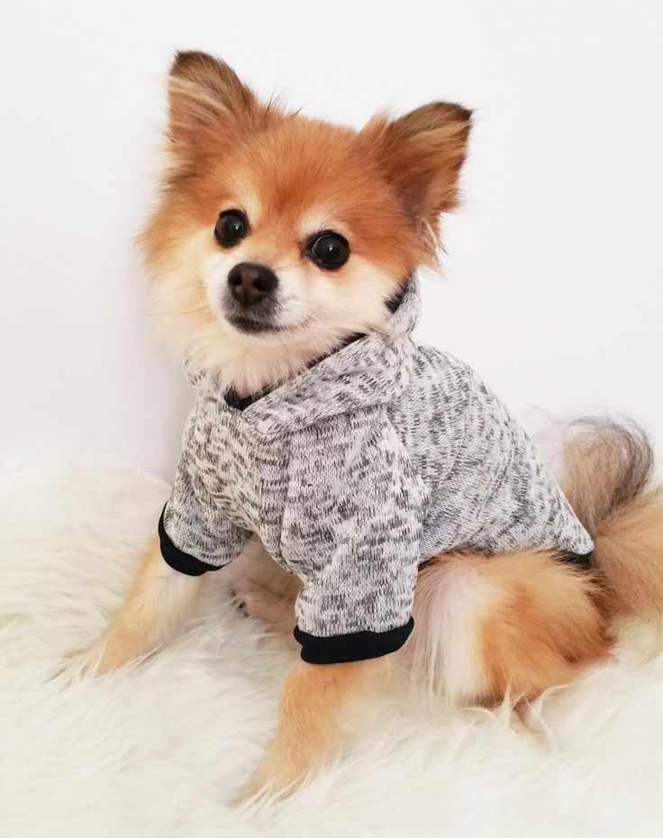 handmade dog clothes, xs~4xl,gray sweater dog hoodie, pet clothes, HPFHKXU