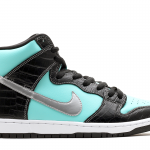 Nike dunk – Comes with Great Padding