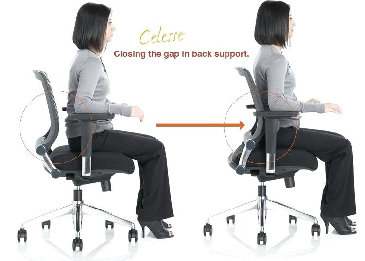 office chair back support appealing adjustable lumbar support office chair  with office chairs lumbar support ergonomic