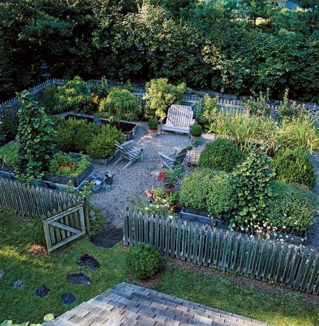beautiful veggie garden