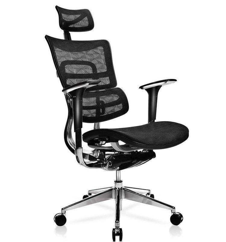 Canarsie Deluxe Executive Ergonomic Mesh Office Chair