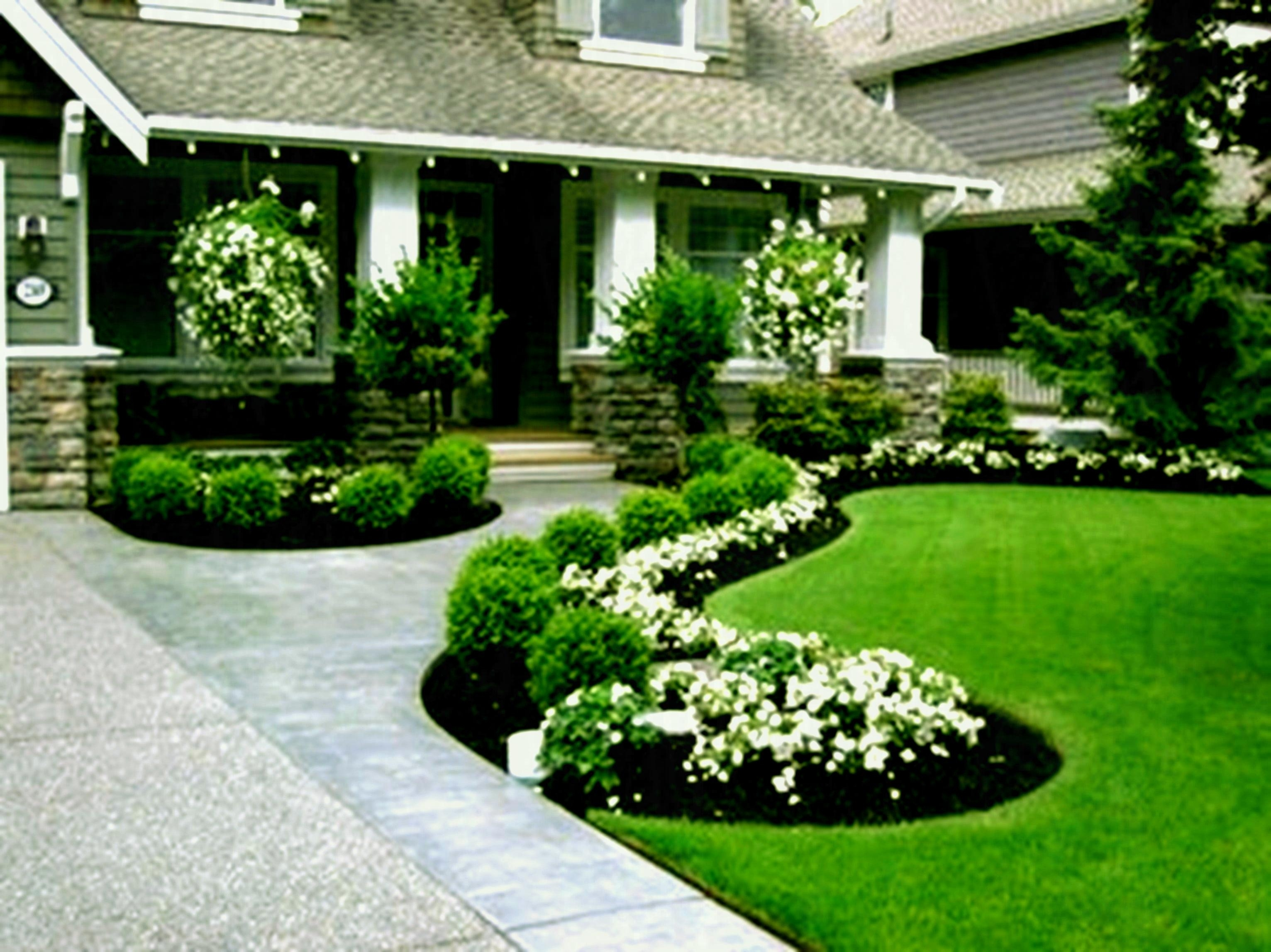 Low Maintenance Landscaping Ideas For Small Front Yard