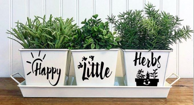 3 white pots with the words Happy little herbs printed on them.