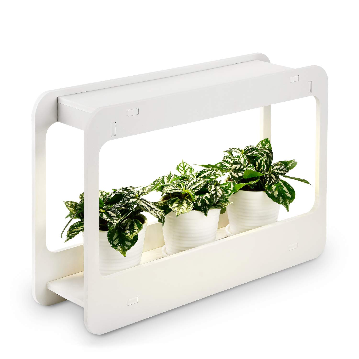 TORCHSTAR Plant Grow LED Light Kit, Indoor Herb Garden with Timer Function,  24V Low Voltage, Indoor Harvest Elite for Gourmet or Plant Enthusiasts,