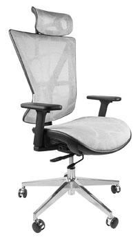 Executive Ergonomic Chair with Headrest