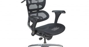 Butterfly Ergonomic Executive Office Chair. Combining