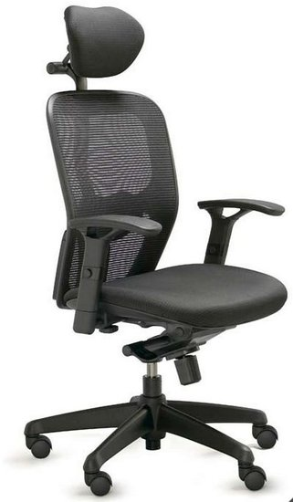 Valo Polo Ergonomic Task Chair with optional headrest