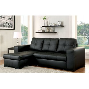 Leather Sectional Sofa Beds