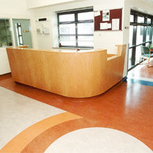 Find your perfect floor by browsing each of our Marmoleum lines.