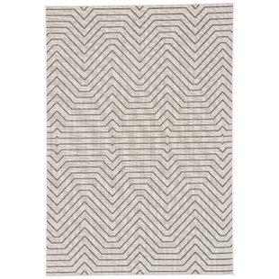 Clarion Light Gray Indoor/Outdoor Area Rug