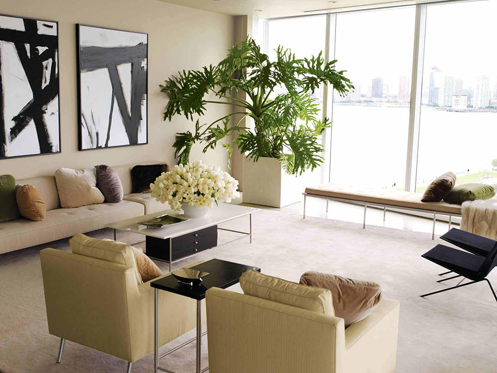Living Room Plants Photo A Guide to Creating a Relaxing Environment