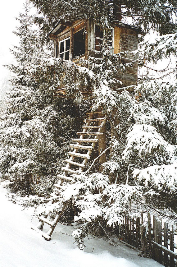 t14 Cool Treehouse Design Ideas to Build (44 Pictures)