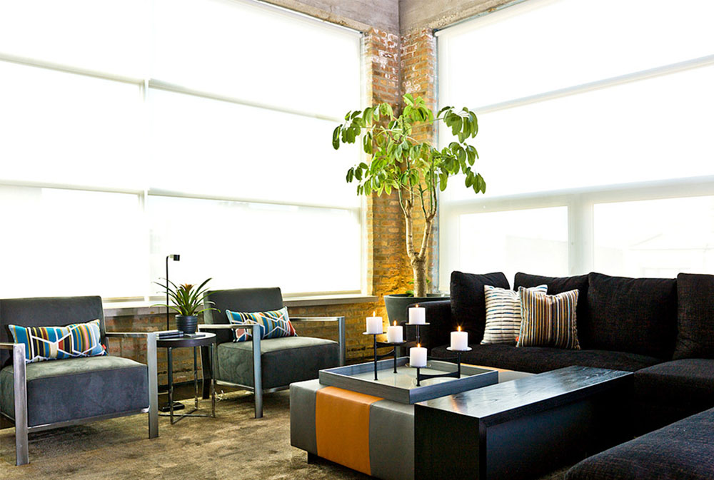 A-Chicago-Auto-Shop-Revs-Up-to-a-Cool-Home-by-Cynthia-Lynn-Photography Umbrella Plant: How to Decorate With It