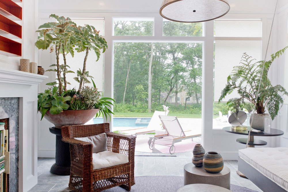 Decorating-your-house-interiors-with-plants-4 Decorate the interiors of your house with plants