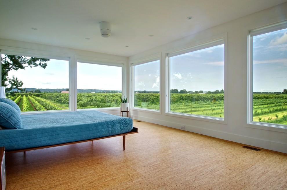 Modern bedroom Choosing the best flooring for pet owners