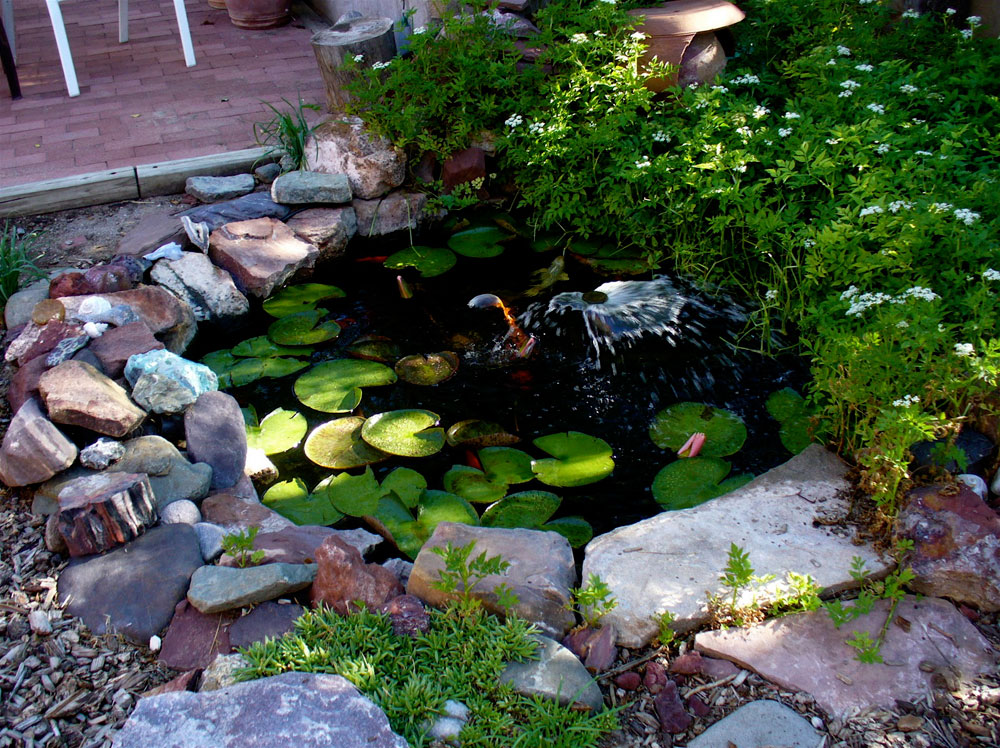 Create a Unique Back Yard With These Garden Pond Design Ideas-11 Create a Unique Back Yard With These Garden Pond Design Ideas