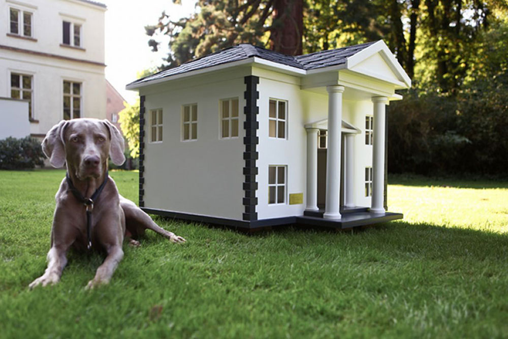 House-ideas-for-mans-best-friend-9 house-ideas for man's best friend