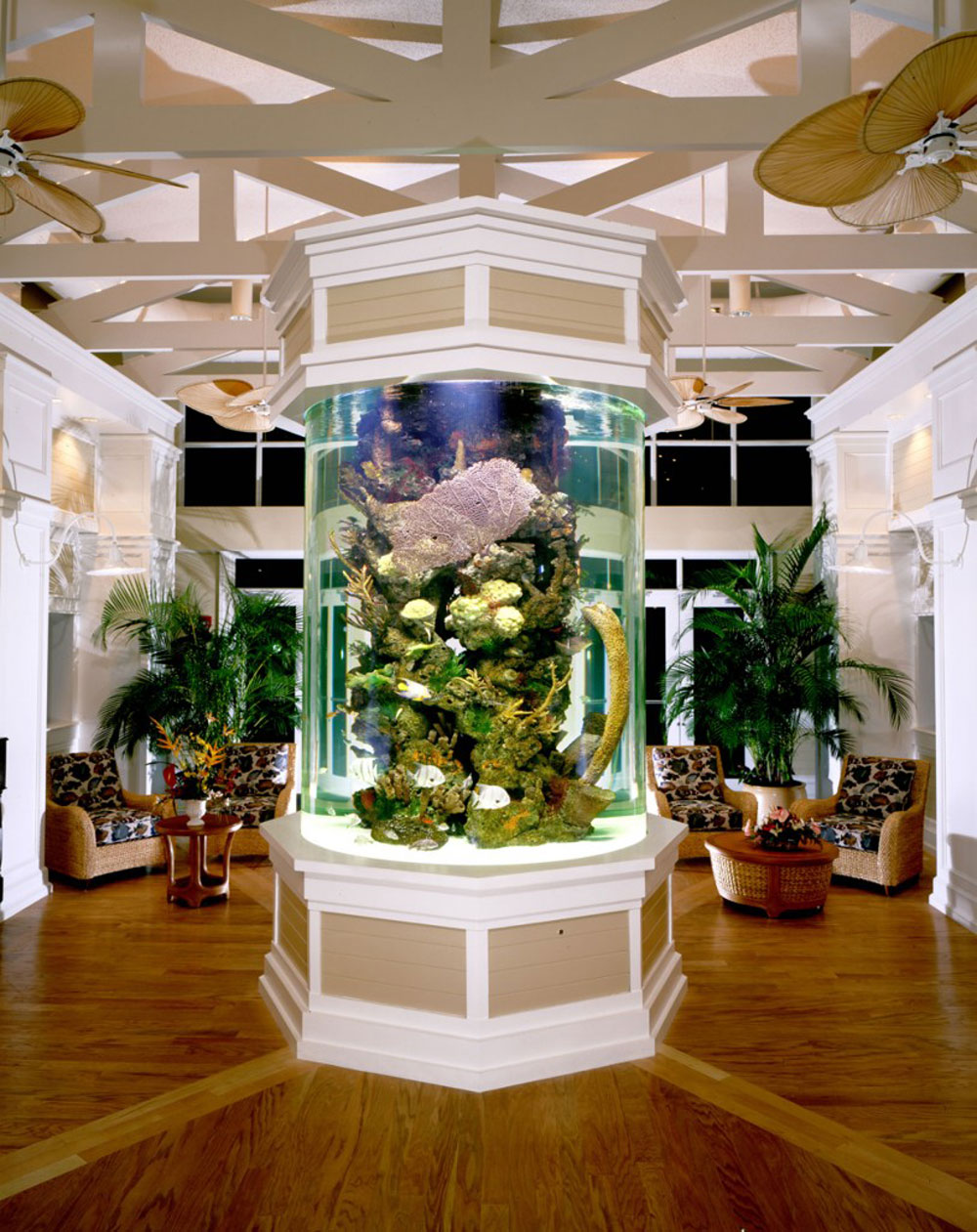 Change the look of your room with this aquarium tank 3 Change the look of your room with these aquarium tanks