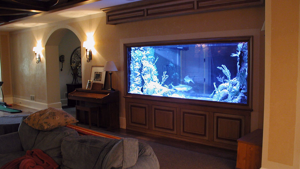 Change The Look Of Your Room With These Home Aquarium Tanks Storiestrending Com