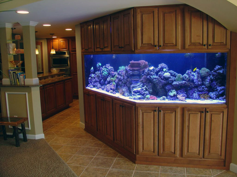 Change the look of your room with this aquarium tank 11 Change the look of your room with these aquarium tanks