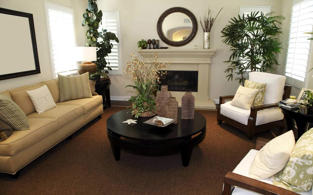 Ideas for decorating the living room with plants 4 ideas for decorating the living room with plants