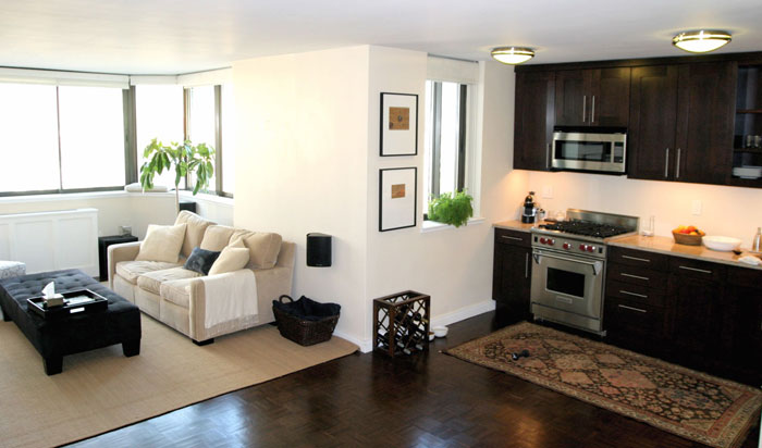 73745996377 Great ideas for furnishing modern apartments