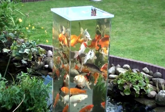 w30 Backyard ponds and water garden ideas - 31 examples