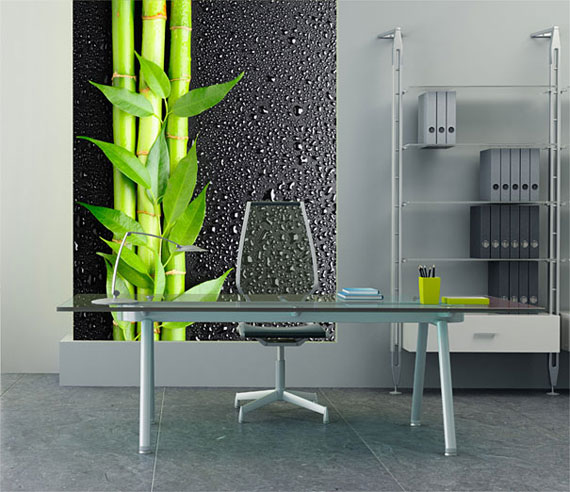 m23 Wallpaper Mural Designs to give you ideas for the walls of your home