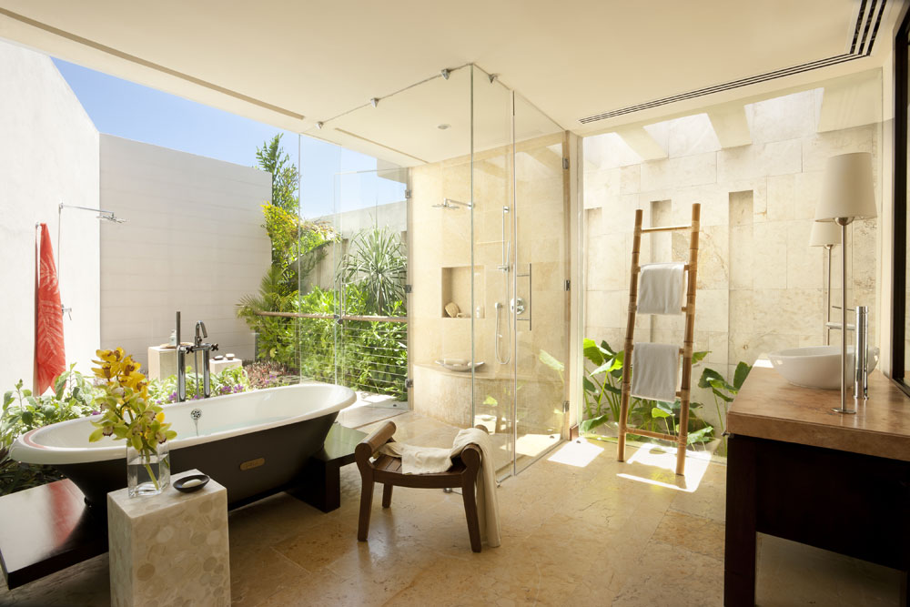 Decorating-your-bathroom-with-beautiful-plants-1 Decorate your bathroom with beautiful plants