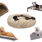 Choosing the best floor for pet owners