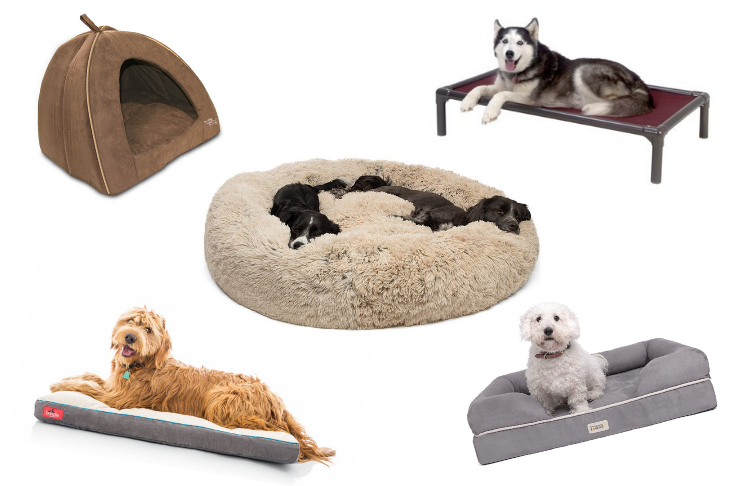Choosing the best floor for pet owners
