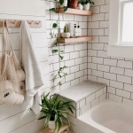 Decorate your bathroom with beautiful plants