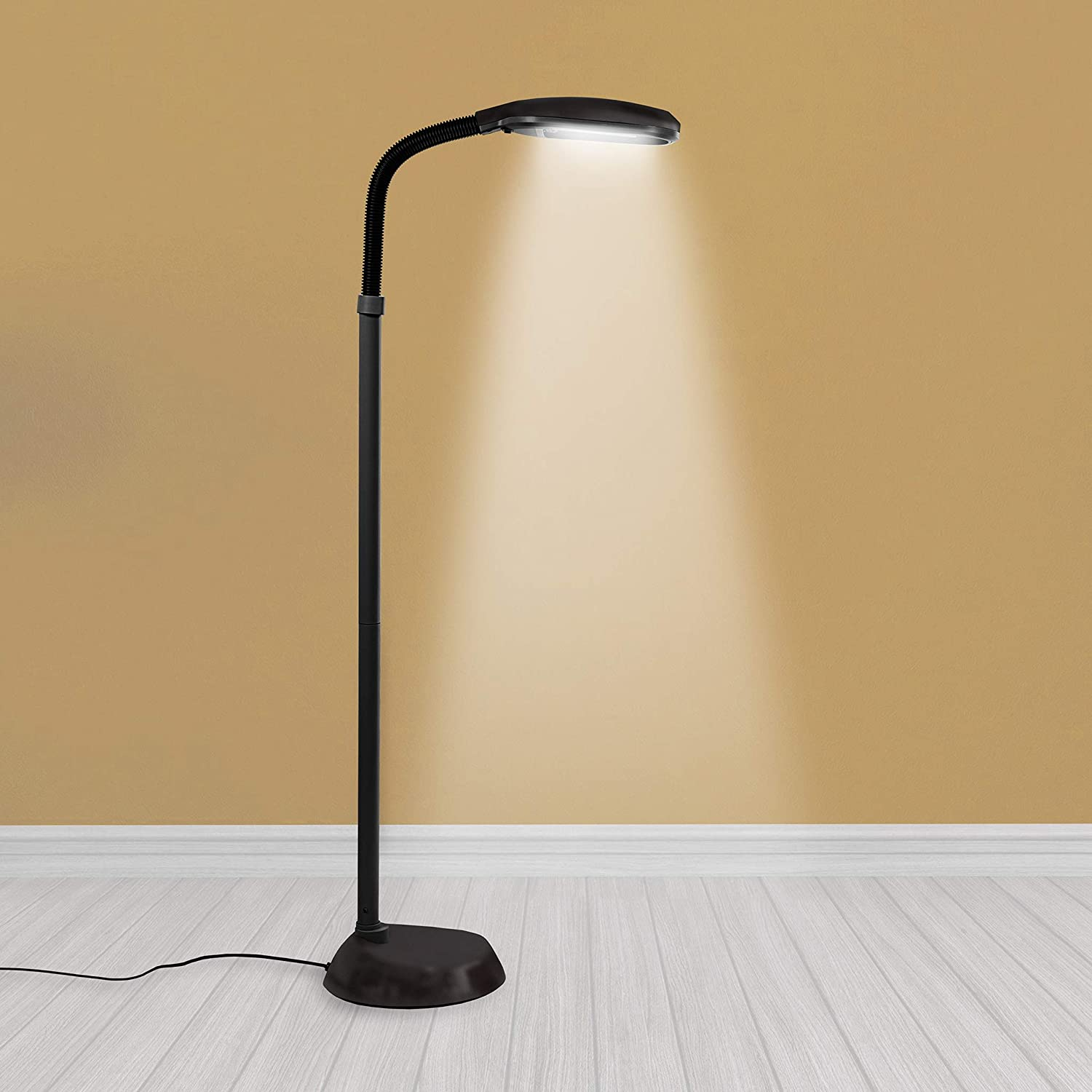Lamp with natural light