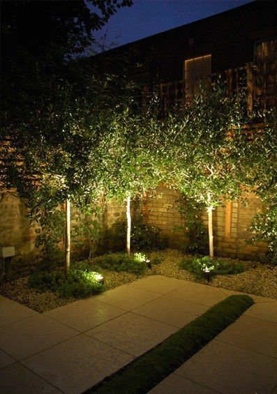 Landscape and outdoor lights