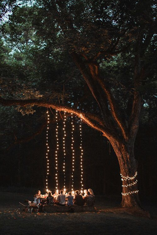 Outdoor lights for parties